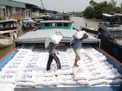Xuất khẩu gạo sang Trung Quốc: Số lượng lớn, rủi ro cao