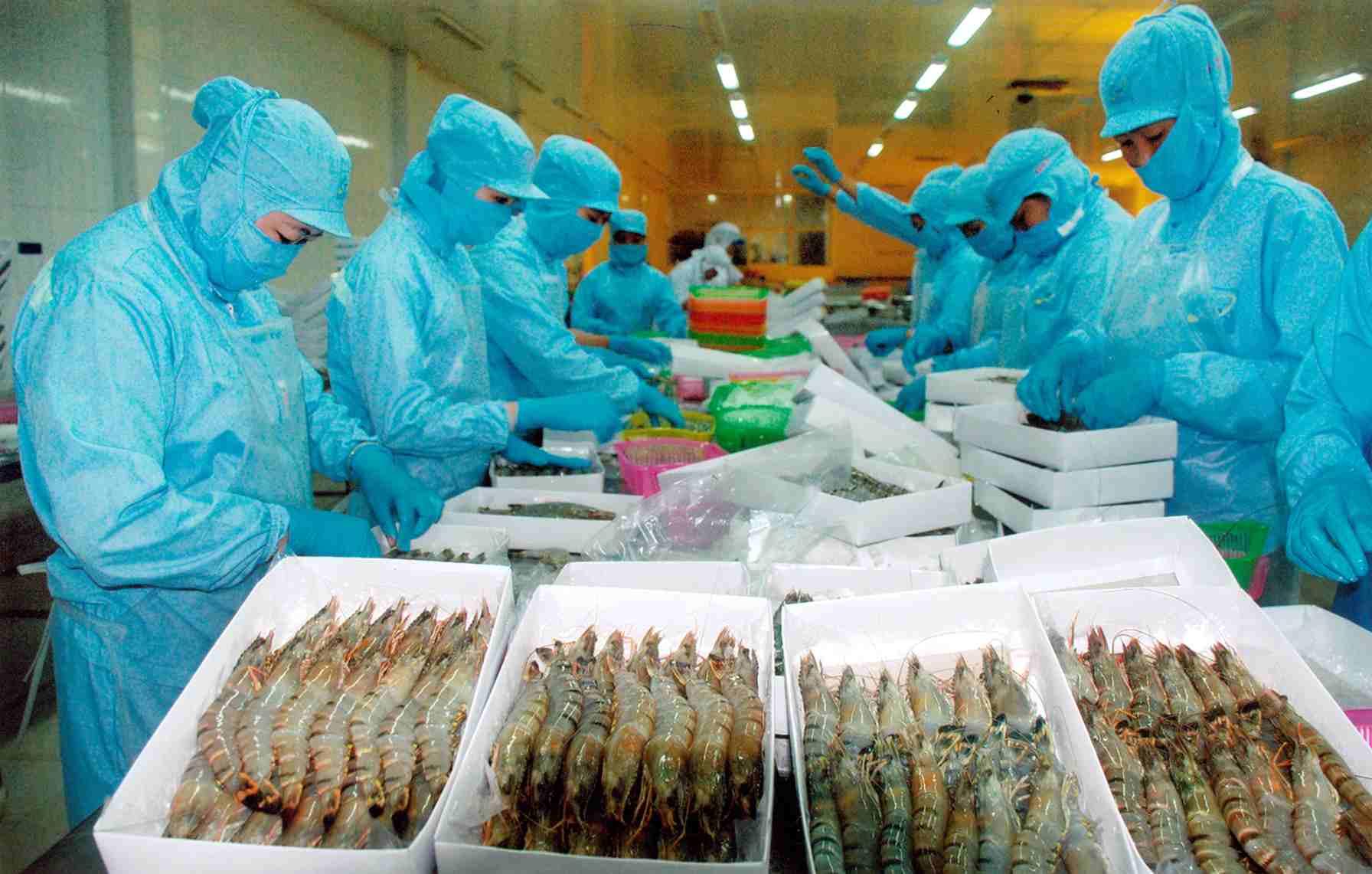 Những loại hàng hóa được xuất khẩu từ Việt Nam sang Trung Quốc
